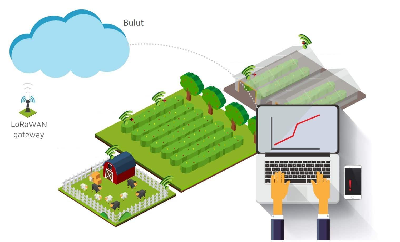 tarımsal sulama ve akıllı tarım