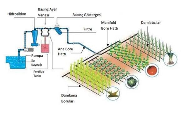 Damla sulama sistemi nasıl kurulur