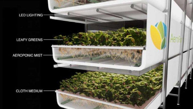 Dikey tarım sistemleri AeroFarms